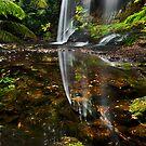 Russell Falls by Barry Feldman
