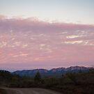 Flinders Ranges by Rosie Appleton