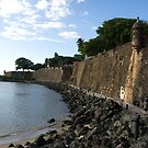 San Juan City Walls by Mark Prior