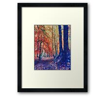 Going Your Own Way Framed Print