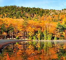 Echo Lake in the Fall by Lyana Lynn