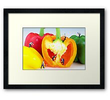 Mining in colorful peppers Framed Print