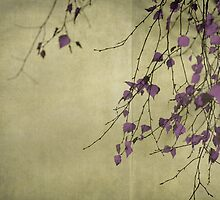 Purple by Anne Staub