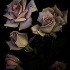 Roses by EbyArts