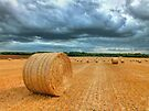 Straw Bales Before The Storm - HDR by Colin  Williams Photography