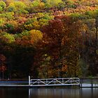 Fall Colorfest by MaureenS