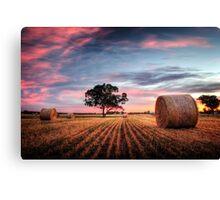 Rural Skies Canvas Print