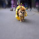 The Annual Tompkins Square Halloween Dog Parade - Here She Comes by newyorknancy