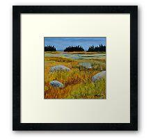 Salt Marsh on Shore Road Framed Print