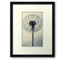 tiny flower with a big heart Framed Print