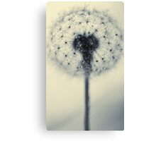 tiny flower with a big heart Canvas Print
