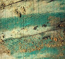 Paint & Dirt on Wood by Vanessa Barklay
