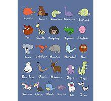 The Animal Alphabet Photographic Print