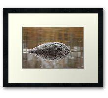 black meteorite  Framed Print