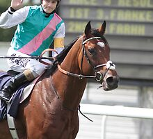 Frankel and Tom at Goodwood by lulu kyriacou