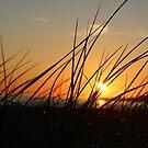 Sun:Halmstad'12 by Fyrion