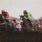Kauto Star....the glorious fifth win.  by lulu kyriacou