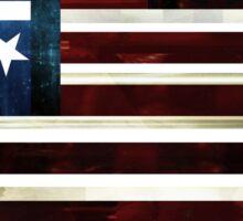 DC Statehood I Sticker