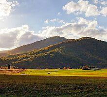 Bathed in Autumn's Glory - Old Rag Mountain, Shenandoah NP, VA by Matthew Kocin