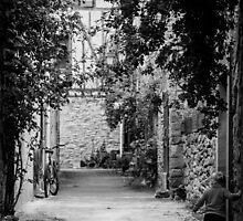 A Wonderful World - Rural Street by Sevenhills