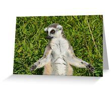 Lemur Meditating Greeting Card