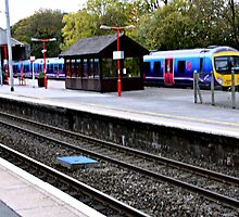 WINDERMERE TRAIN . by Dahlia48