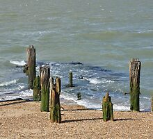 Groyne by the Sea by Pauws99