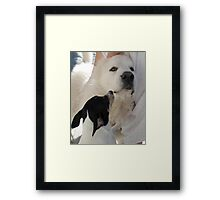 DUKE AND FRIEND Framed Print
