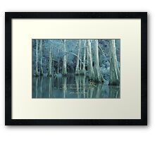 ENCHANTED BLUE BAYOU Framed Print