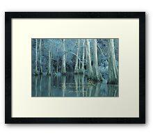 ENCHANTED BLUE BAYOU Framed Print