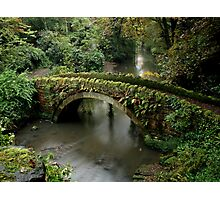 Bridge Over the River Ouse Photographic Print