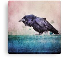 Words of a Raven Canvas Print