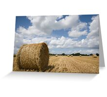 Harvest time in France Greeting Card