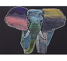 'Colourful Elephant' Photographic Print