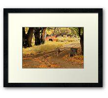 Pup Paradise Framed Print