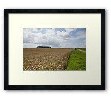 Golden landscape of France Framed Print