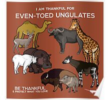 I Am Thankful For Even-Toed Ungulates Poster