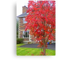 Autumn In Suburbia Canvas Print
