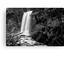 Hopetoun falls in Balck and White Canvas Print