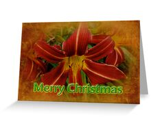 Merry Christmas Greeting Card - Daylily Greeting Card