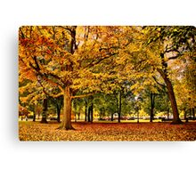 Autumn in Boston  Canvas Print