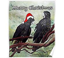 'COCKY CHRISTMAS' Poster