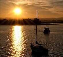 Sunset At Alloa Docks by evisonphoto