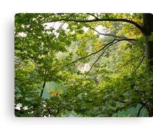 Trees and mountain lake Canvas Print