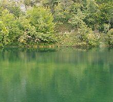 Green mountain lake by pisarevg