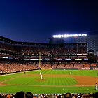 Welcome to Birdland! by InvictusPhotog