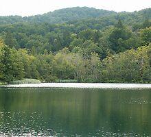 Mountain lake by pisarevg