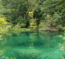 Green Lake by pisarevg