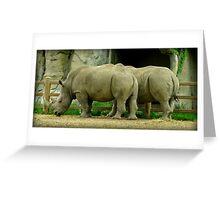 Pair Of Rhinoceroses Greeting Card