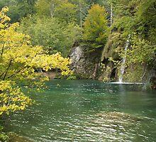 Beauty of Plitvice lake by pisarevg